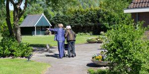 Bos en Meerzicht wandeling in de tuin. Vakantie met zorg.
